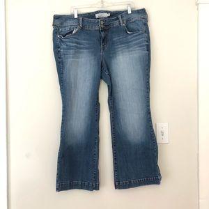 Torrid boot cut mid wash denim jeans 20extra short